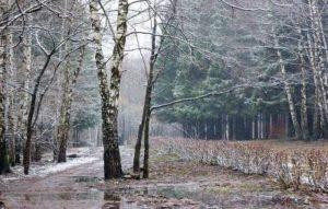 Зимний день, но нет зимы