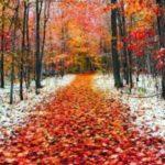 Осень поздняя томится