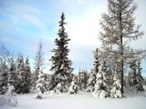 zima-prishla