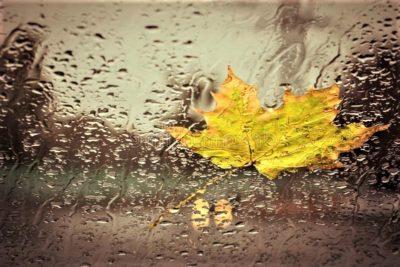 Дождик на окнах рисует осень