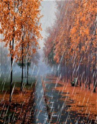 Осень дождиком струится