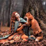 Осень –  рыжая лисица