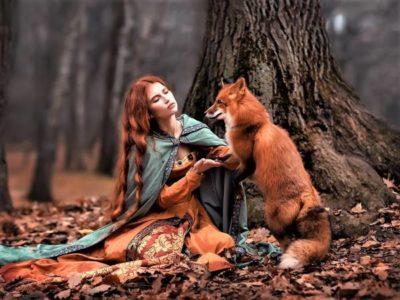 Осень - рыжая лисица