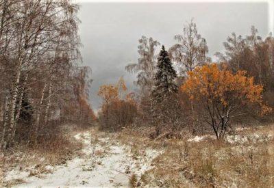 ожидание-зимы